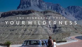 pineapple_thief_wilderness